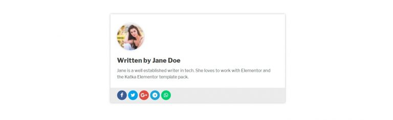 Elementor Author box template 2