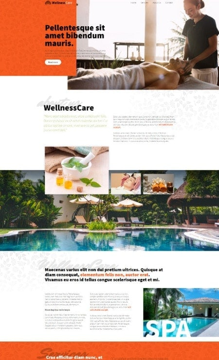 Katka Pro Wellness - Landing page Elementor page template